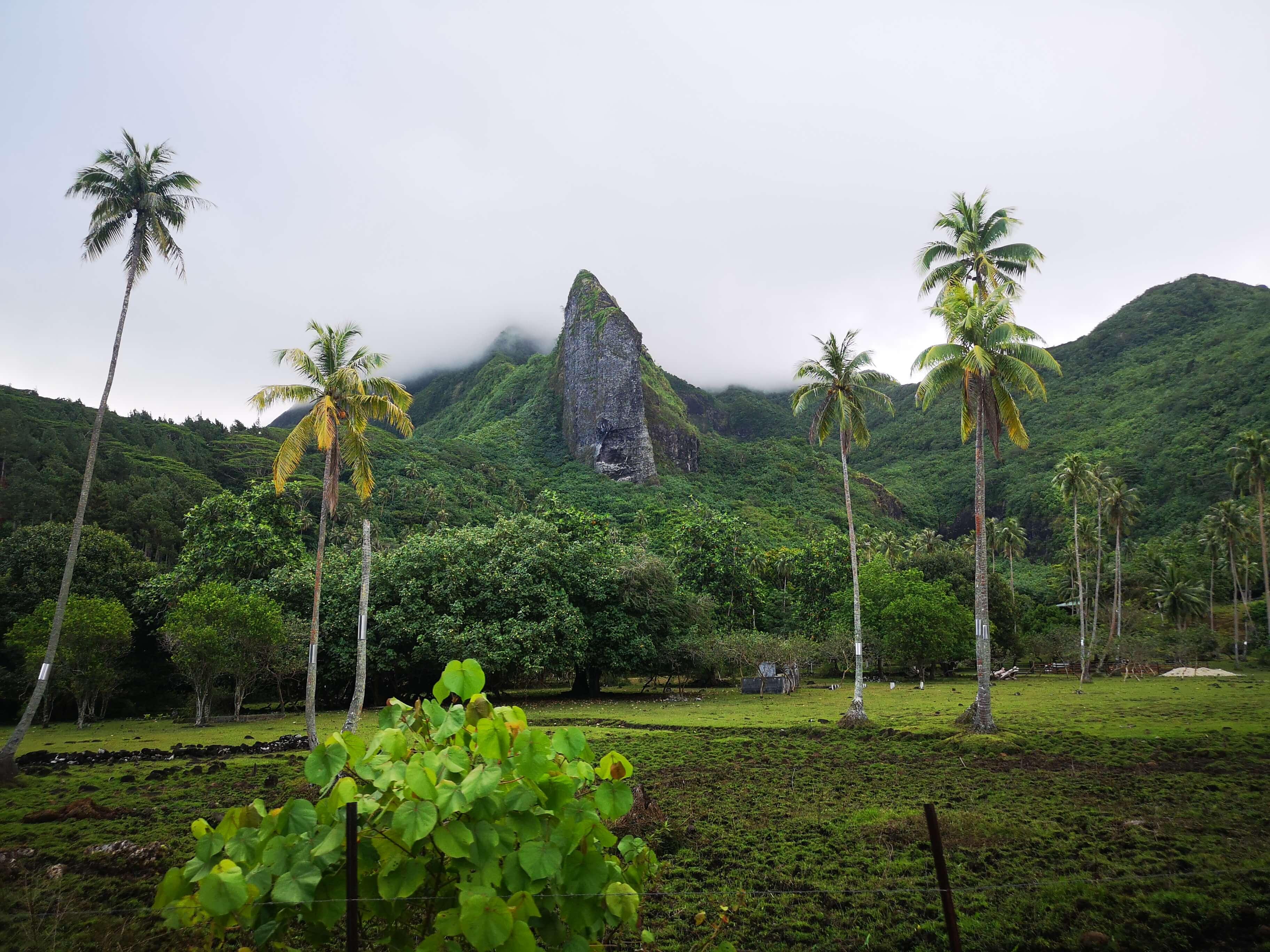 фридайвинг во Французской Полинезии